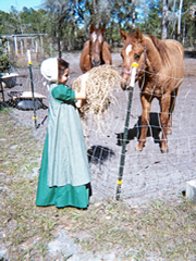 Picture of girl with horses